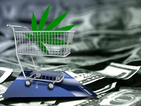 Cannabis Payments: Learn how to accept contactless payments and mobile wallets in your dispensary.