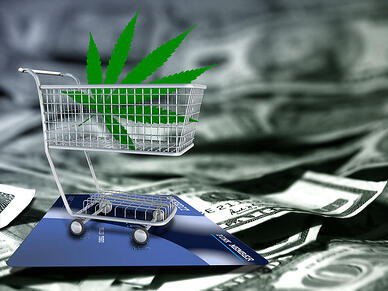 Cannabis Seed Payment Processing