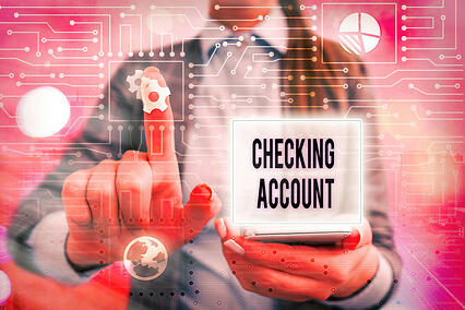 Accept payments online using the customer's checking account.